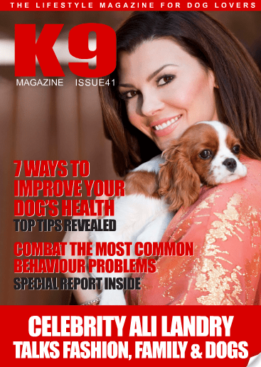 K9 Magazine Issue 41