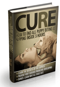 Ouch! Why Do Puppies Bite?