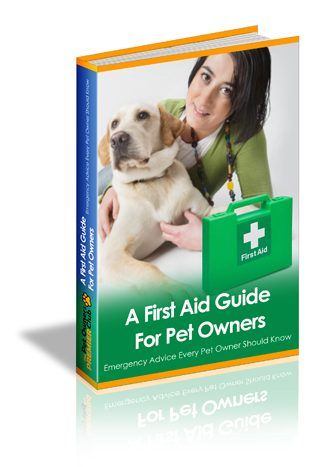 Essential First Aid For Dogs