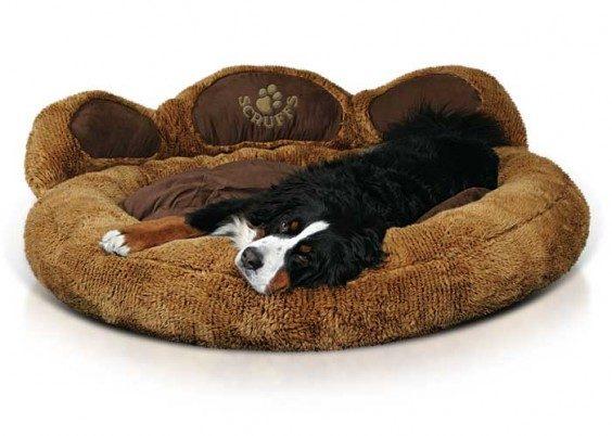 The Top Five Designer Dog Beds