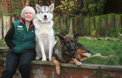 How To Choose A Dog Trainer That's Right For You & Your Dog