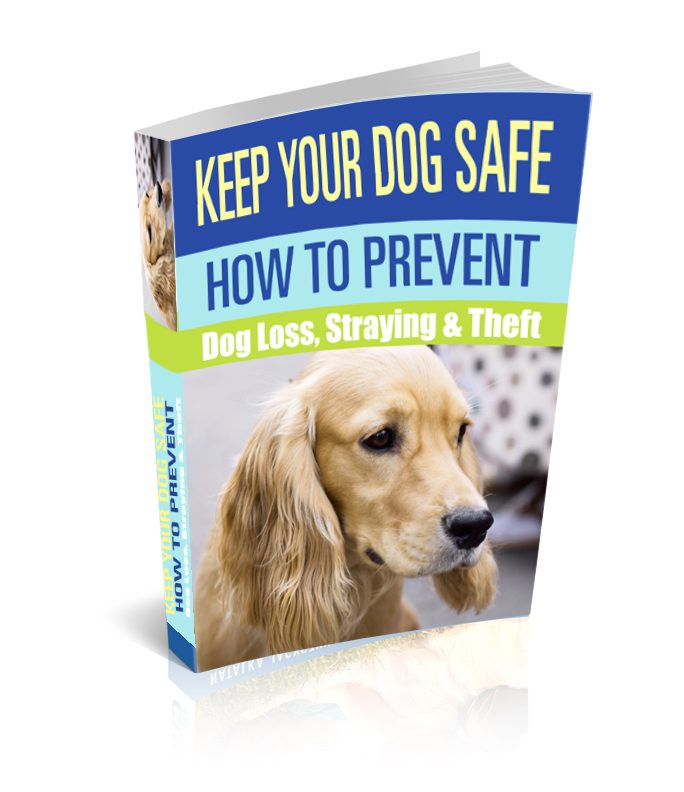 Keep Your Dog Safe