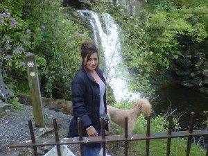 Pet Friendly Loch Lomond
