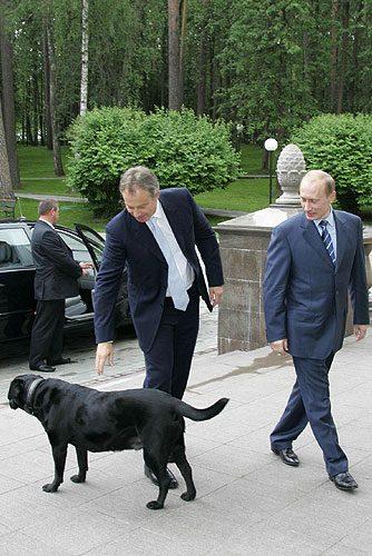 Koni - Vladimir Putin dog - Tony Blair arriving at the President of Russias residence
