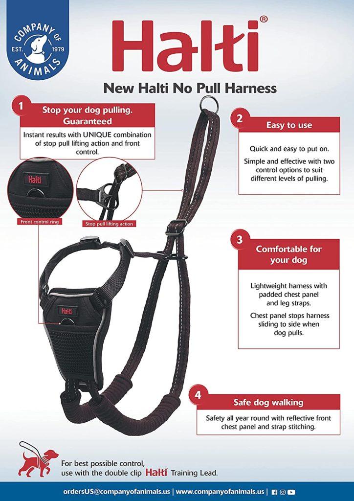Best Dog Walking Harnesses