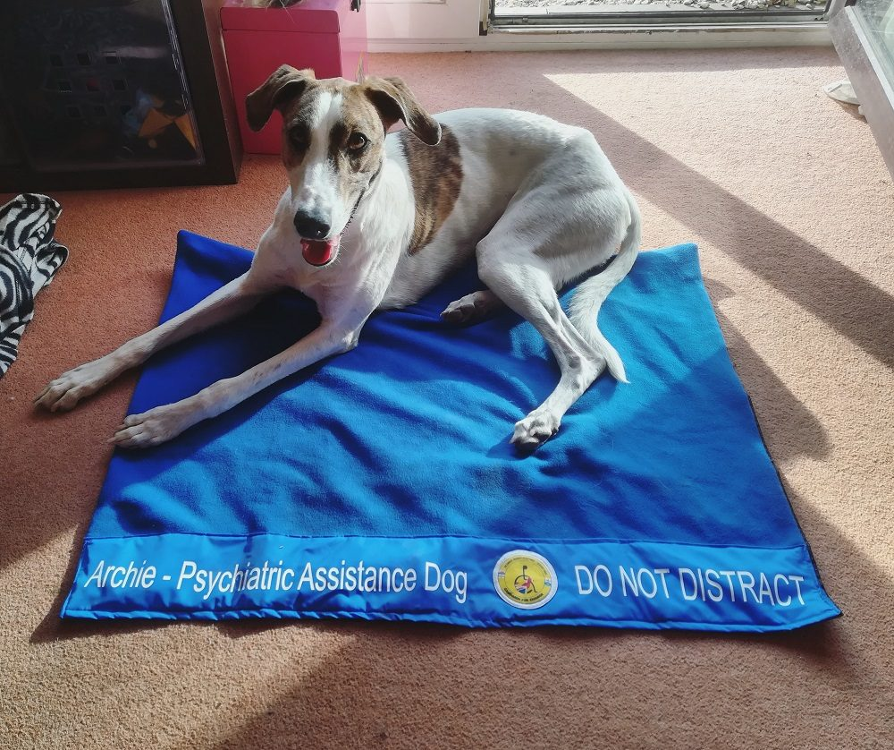 What Does a Psychiatric Assistance Dog Do?