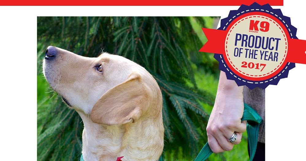 Best Dog Products 2017: Here Are 5 of the Best We've Seen & Tested