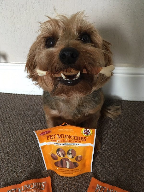Can These Dog Treats Motivate Even the Most Un-Treat Motivated Dog?
