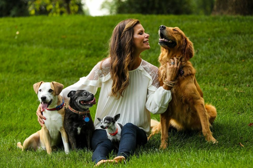 If Your Dog Could Talk, What Would You Ask Them?