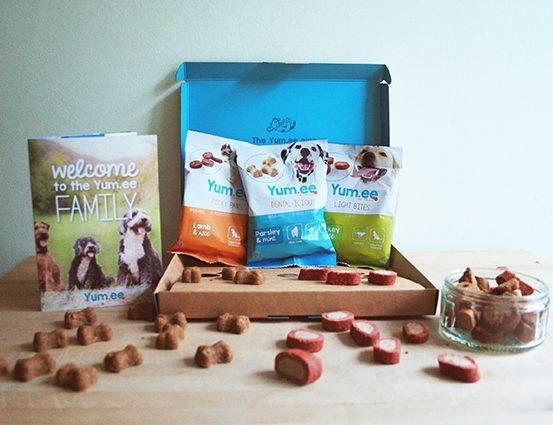 4 Luxury Dog Products Your Dog Will Thank You For