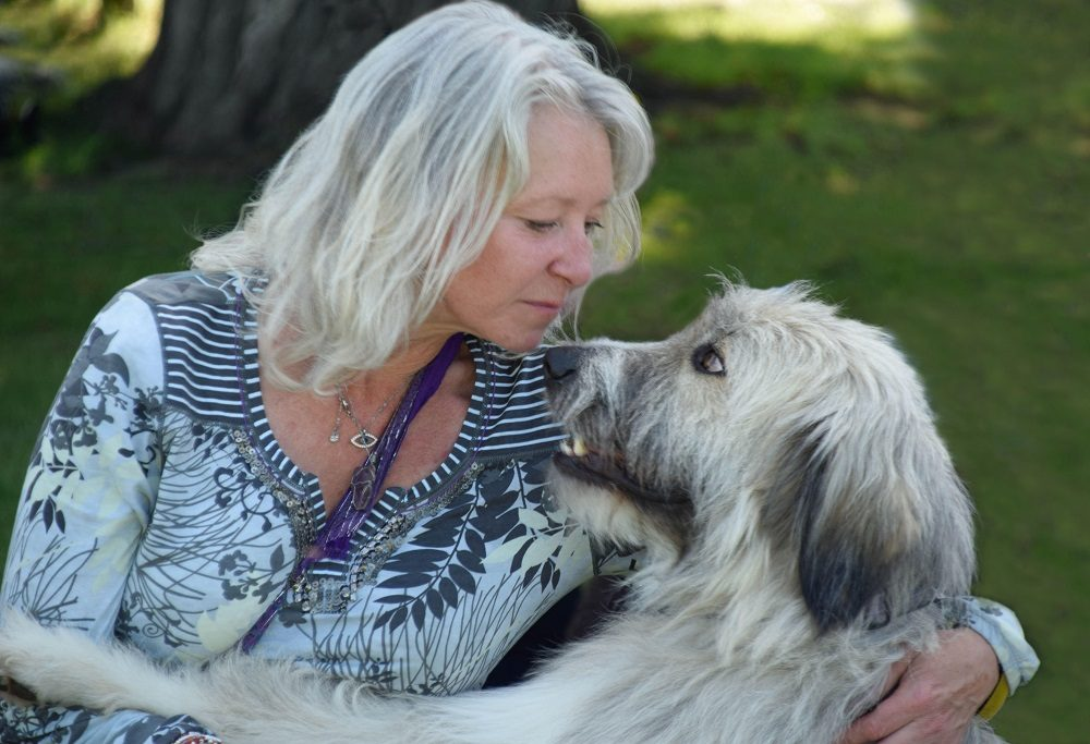 There's More to This Dog Than a Viral Video, Here's His Story