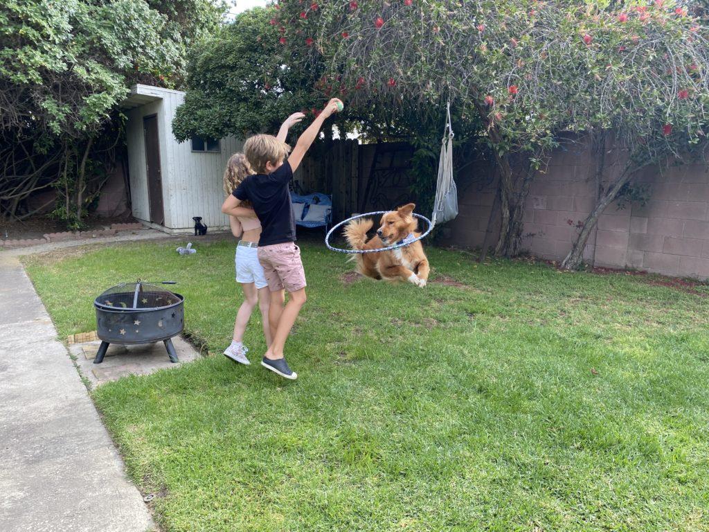 "Juju Journey Brener: ""Dogs Are Amazing!"""