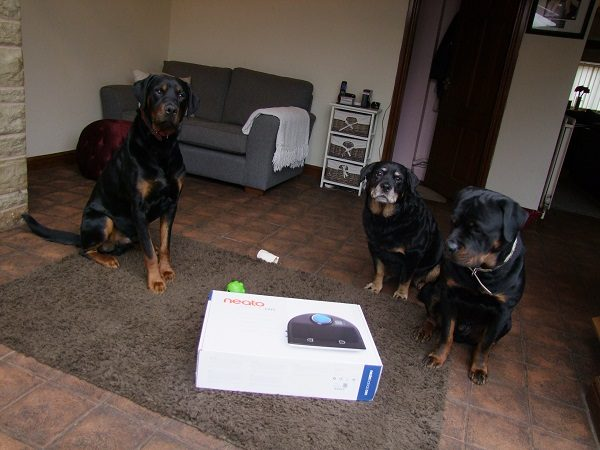 A Dog Owner's Review: How Much Do You Know About Robot Vacuum Cleaners?