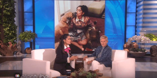 Salma Hayek's Dog Stole a Wedding Cake & Her Recall of the Story Is as Funny as It Sounds
