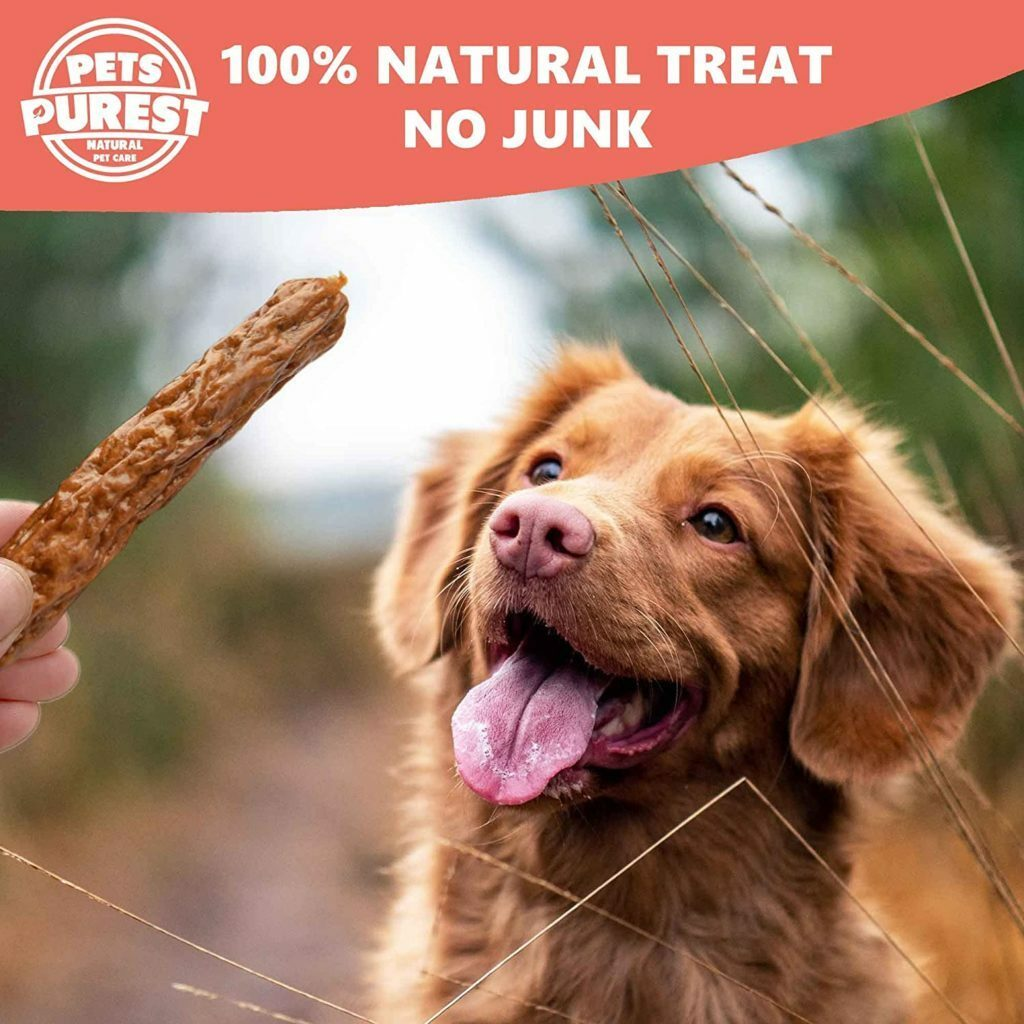 Best Dog Treats 2021