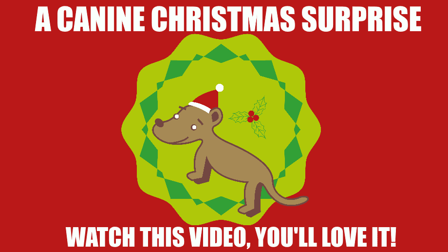 Merry Christmas From Everyone at K9 Magazine - Here's Your Gift From Us