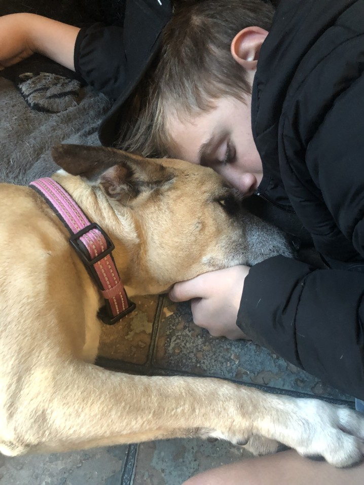 Coping With The Death of a Dog: A Springboard to Change