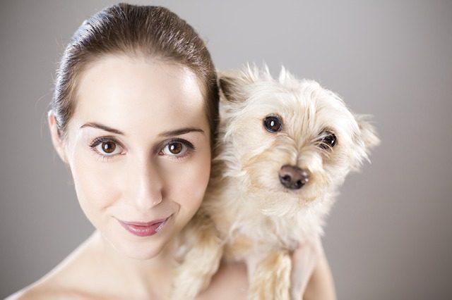 dog smiling photo