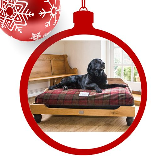 These 6 Gifts are Guaranteed to Be On Your Dog's Wish List This Year!
