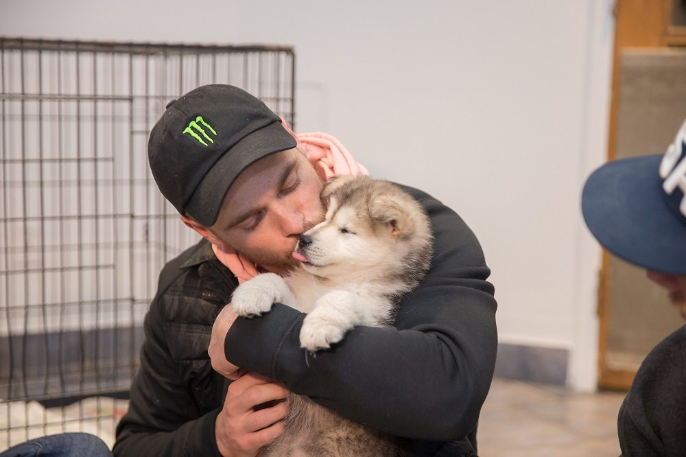 Here's the Moment Olympian Gus Kenworthy Was Reunited With His Dog Saved From South Korea