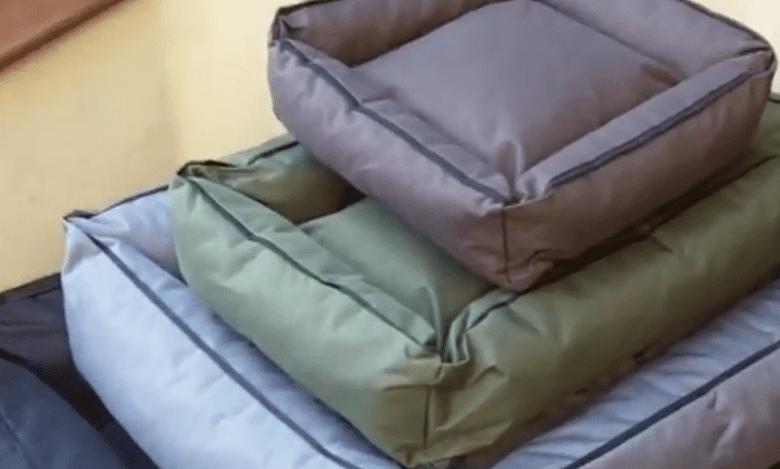 Superstar Dog Beds from PetLandia