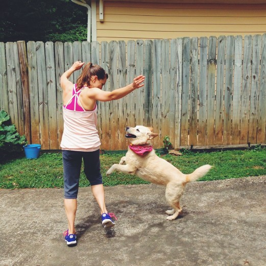 8 Simple Ways You Can Make Your Dog's Day Better