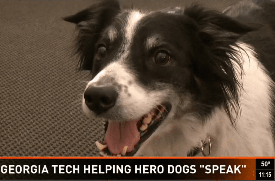 This Technology Allows Dogs to Speak - You Need to See it